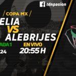Por Univision TDN Monarcas vs Alebrijes en Vivo Copa MX 2018